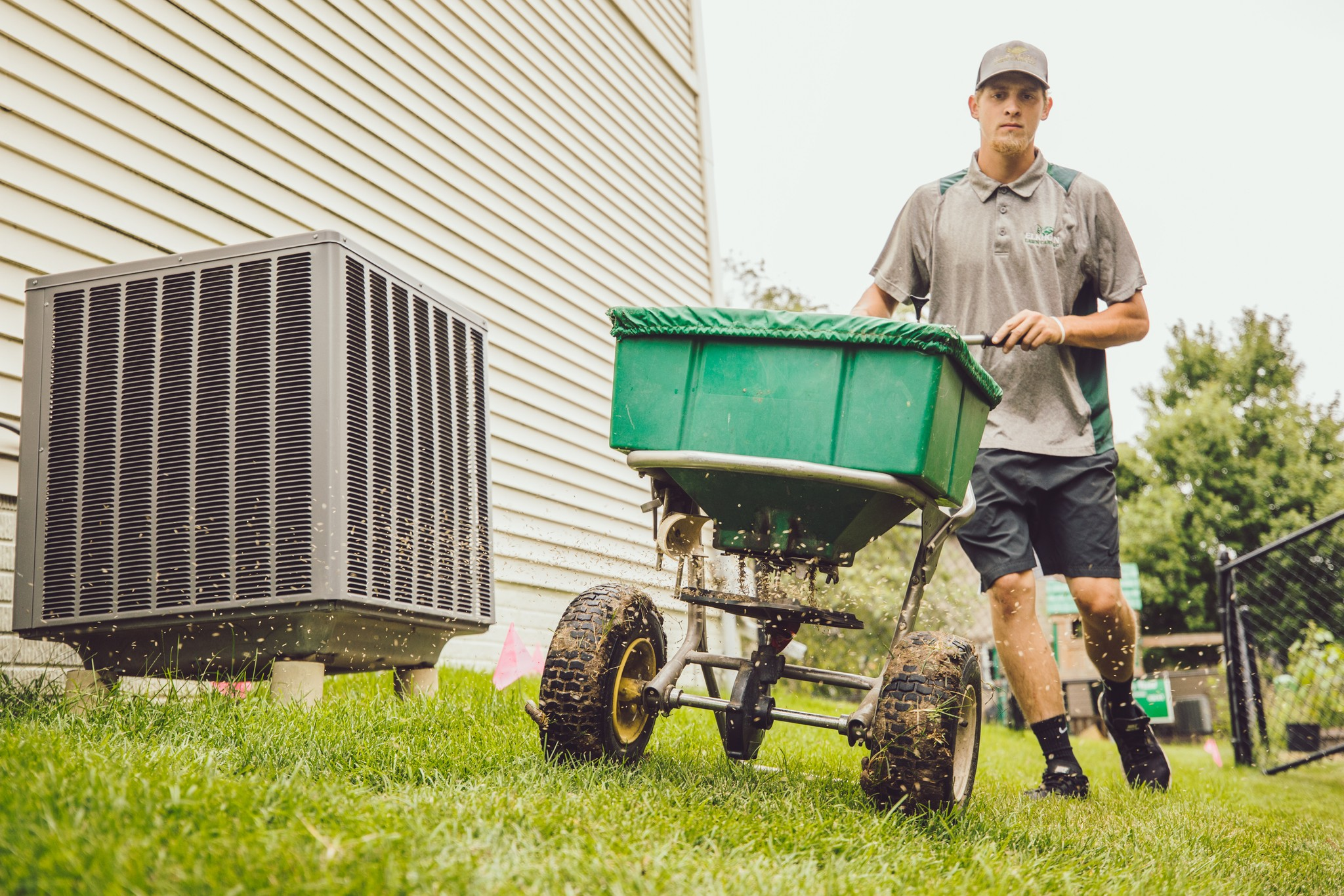 aeration and overseeding service